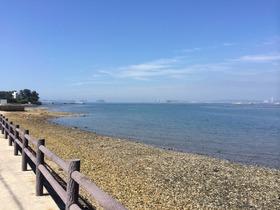 佐久島の旅