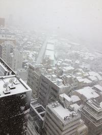 いや~。すごい雪でしたね